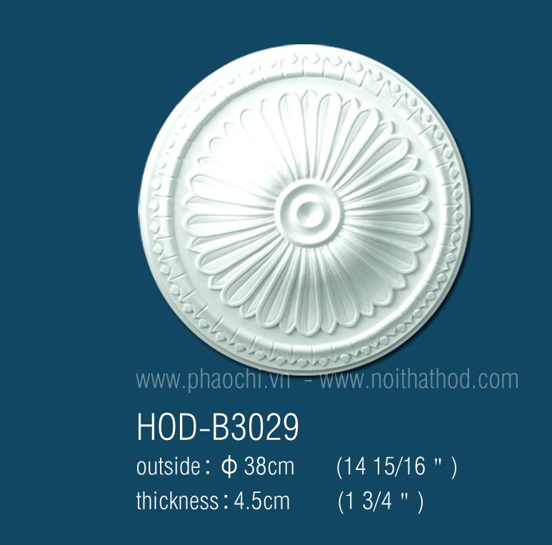 HOD-B3029