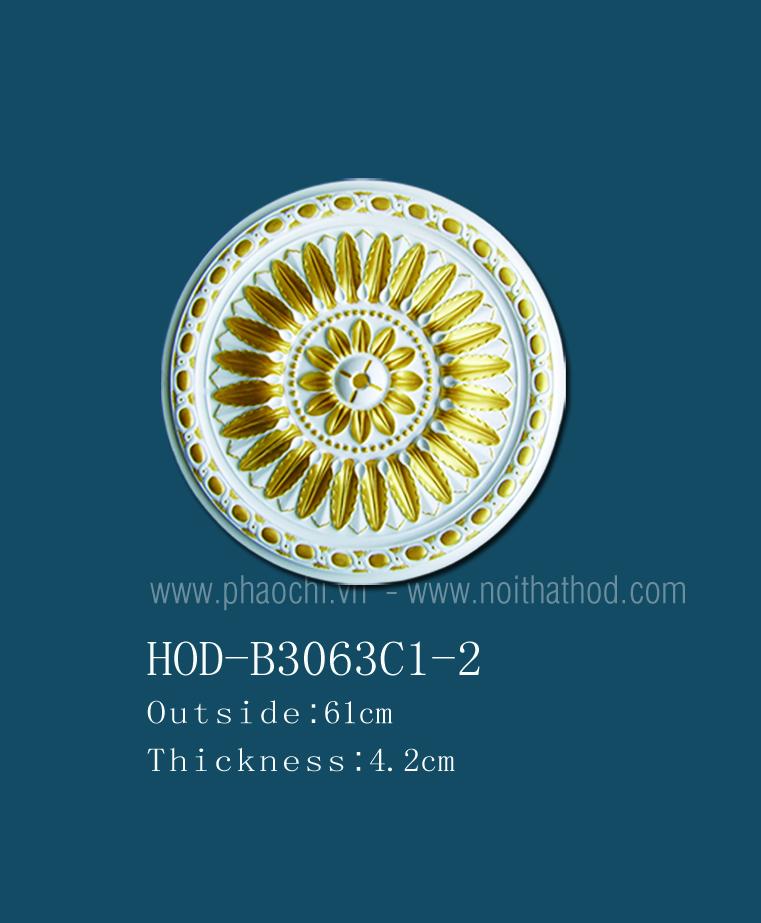 HOD-B3063C1-2
