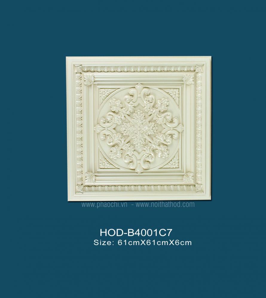 HOD-B4001C7