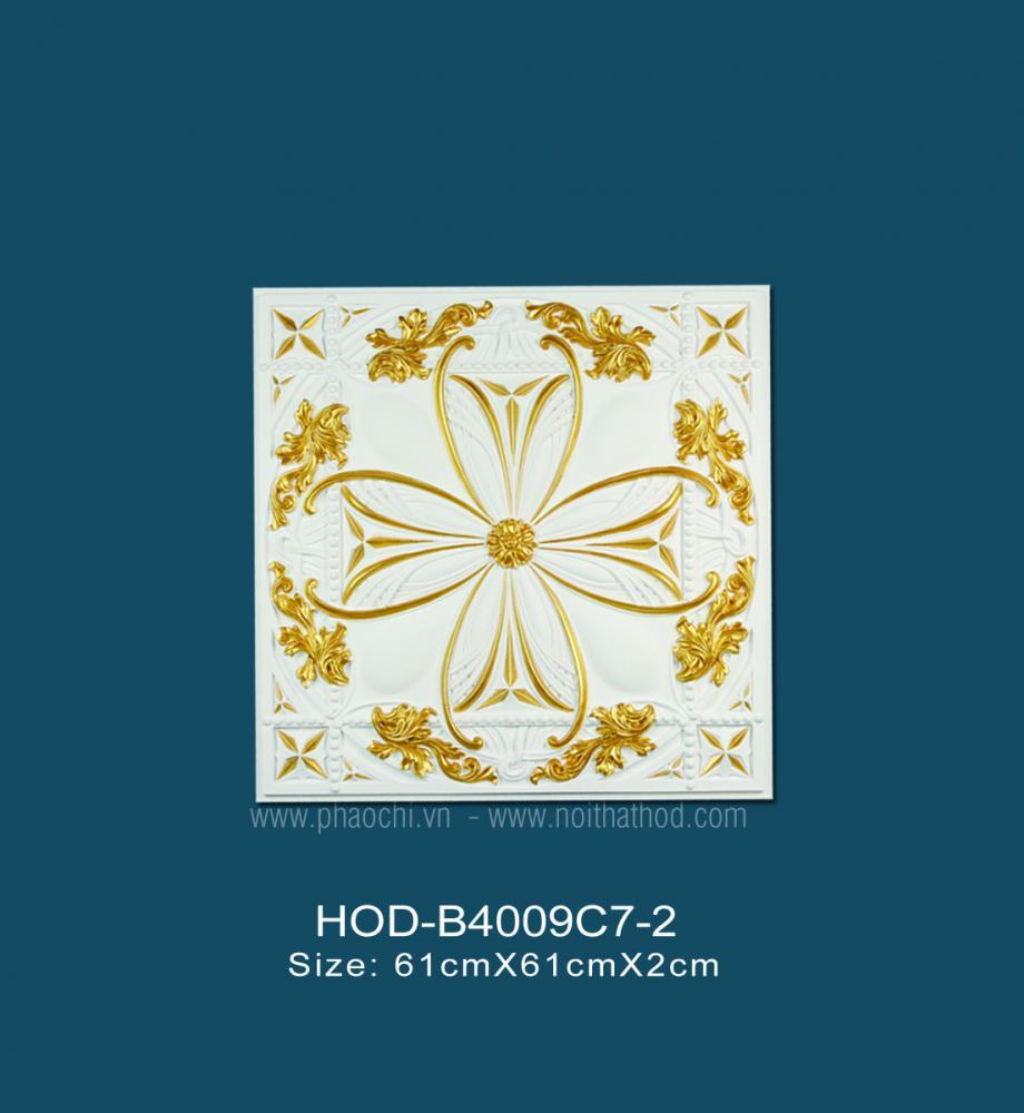HOD-B4009C7-2