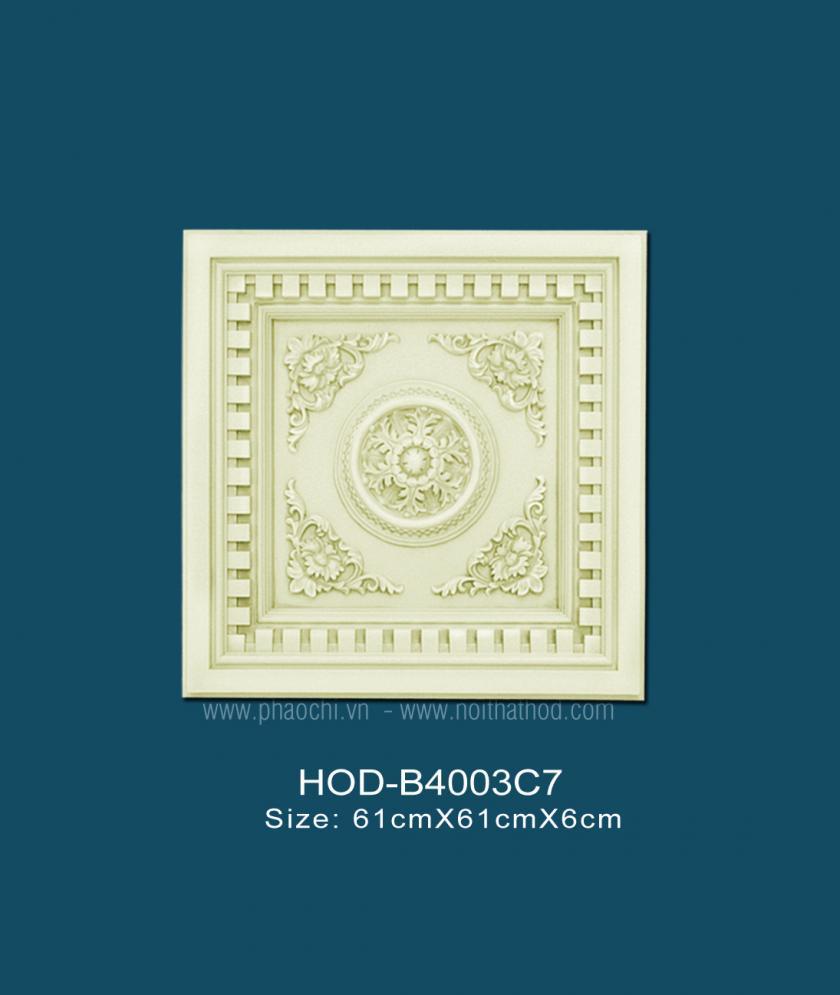 HOD-B4003C7