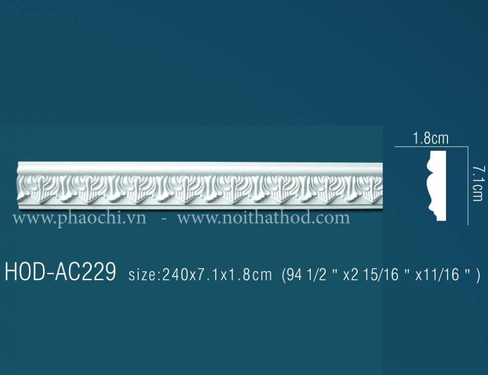 HOD-AC229